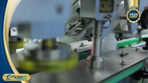 Nhà máy gia công thực phẩm bảo vệ sức khỏe