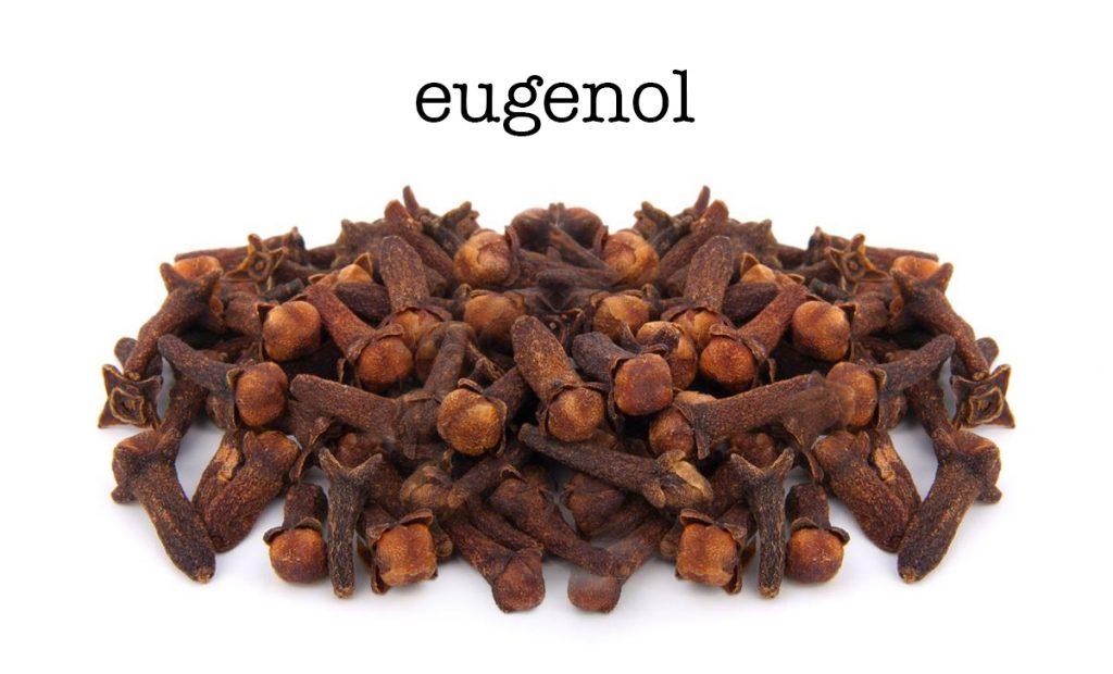 Eugenol là gì? Eugenol có tác dụng gì?