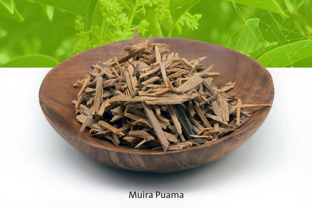 Muira Puama là gì