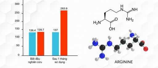 Theo báo cáo NCKH tại Medical University,thử nghiệm 2 nhóm nam giới, sau 1 tháng sử dụng, nhóm dùng giả dược có kết quả không thay đổi, và nhóm sử dụng L- Arginine, nồng độ Nitric Oxide tăng 89%.